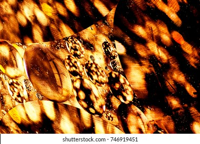 Abstract gold bokeh light. Golden sparkles isolated on black background. Christmas template for design.
