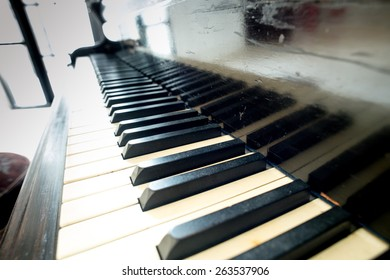 Abstract grand piano,open a piano, strings.