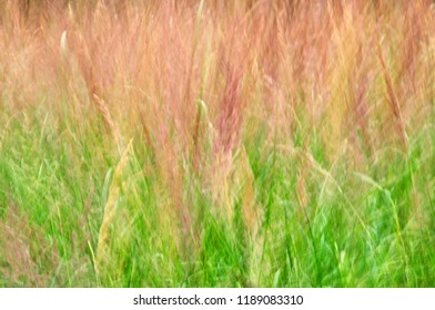 Abstract grass background texture natural