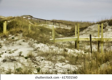 Abstract of grassy dunes with boardwalks on Tybee Island, a barrier island in southeastern Georgia, USA, with digital painting effect, for themes of conservation, ecology and the environment