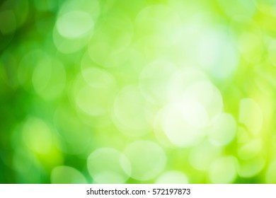 abstract green background.Green blurred background and sunlight.