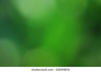 Abstract green blured background of de-focused leaves