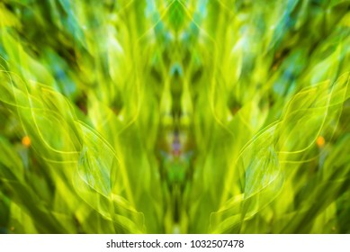 abstract green leaves nature background
