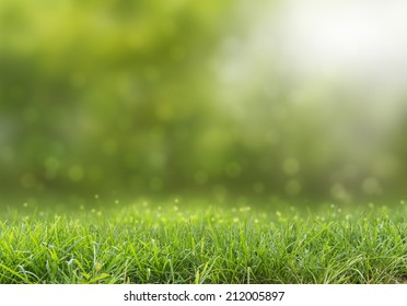 abstract green natural background