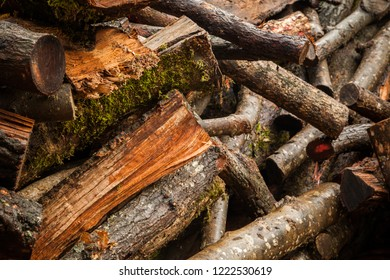 An abstract image of cut and stacked firewood