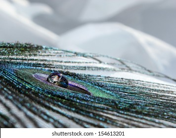 An abstract image of a peacock feather with a clear water drop
