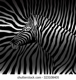 Abstract image of the profile of the head black and white zebra background zebra on a black and white stripes. Silhouette zebra shadow covered.cloth. wallpaper.