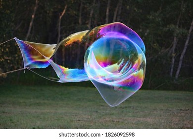 An abstract image of the rainbow like sheen and iridescent reflection from large bubbles being blown into the air.