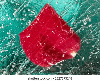 Abstract Image of red Rose blossoms behind an Ice Plate