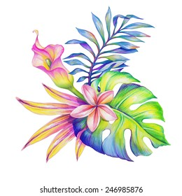abstract jungle nature, exotic flowers and leaves watercolor illustration isolated on white background