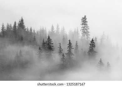 Abstract landscape in the mountains, with fog  in the forest