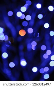Abstract lights in a tree at wintertime.