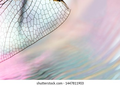 abstract macro of dragonfly wing detail diagonally in left corner over wavy water surface background in beautiful pastel gradients of pink, green, orange, aqua and purple with room for text