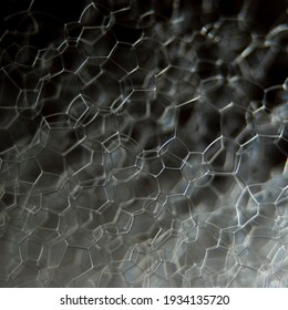 abstract macro of foam, in black and white. Lit to show structure and texture