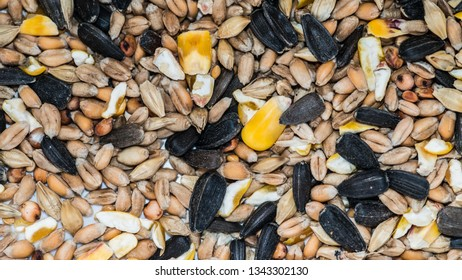 An abstract macro shot of some bird seed.