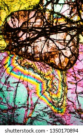 Abstract micrograph of the mineral olivine pyroxenite, viewed with a polarizing microscope at 100x.