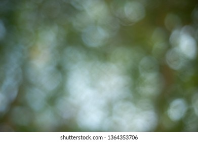 Abstract Nature Bokeh Backgrounds