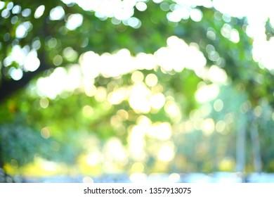 abstract nature green blur bokeh light background