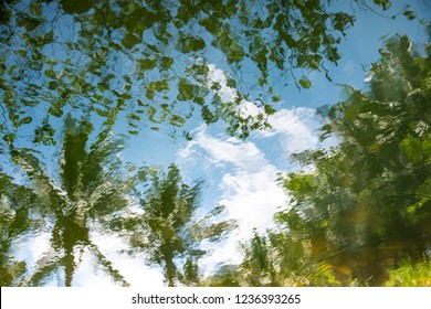 Abstract nature image of water reflecting trees and sky with small ripples.