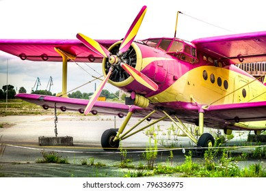 Abstract, old yellow, pink, purple plane in abandoned airport next to dark forest in an overcast day. Military plane, russian aircraft. Soviet mass-produced single-engine biplane at field aerodrome.