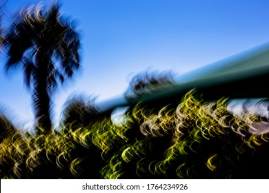 Abstract palm trees, hedge and carport silhouetted with warm-toned half-moon light-streaks under vibrant blue and white sky