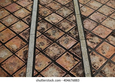 Abstract pattern background over seventy years old tiles for floors and walls in southern thai Museum:Close up,select focus with shallow depth of field:ideal use for background.