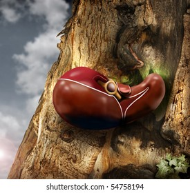 Abstract photo of a human liver growing out of a tree trunk