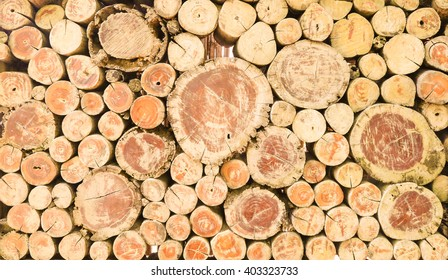 Abstract photo of a pile of natural wooden logs background, top view .
