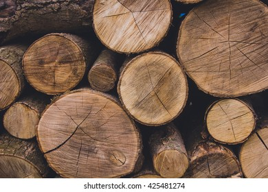 Abstract photo of a pile of natural wooden logs background, top view . Cross section of the timber for the background.
