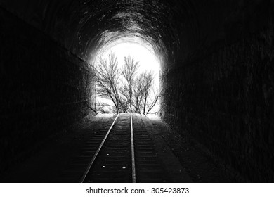 Abstract Photography, tree, train track