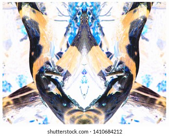 Abstract photomanipulation reflected log in forest