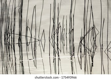 Abstract picture of a reflection of reed in the water/ice