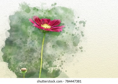 Abstract pink cosmos flower on watercolor painting background digital illustration brush to art for print , Valentine Cards, greeting card,T-shirt design