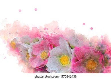 Abstract Pink and White flower on watercolor background, Brush watercolor, Flower Blooming