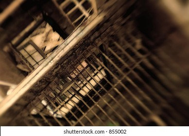 abstract prison