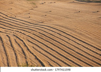 abstract pttern of corn field with straw bales with long shadows of setting sun