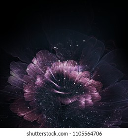abstract purple fractal flower, computer generated graphic