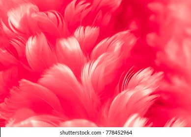 Abstract red angel wings feathers closeup background. Fight the airborne corona virus 2019 2020 pandemic.