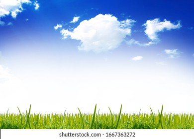 Abstract red wall texture background with green grass