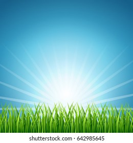 Abstract rising sun over green grass background. Nature meadow in light sunny illustration