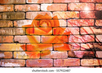 Abstract rose on the brick wallpaper in vintage style