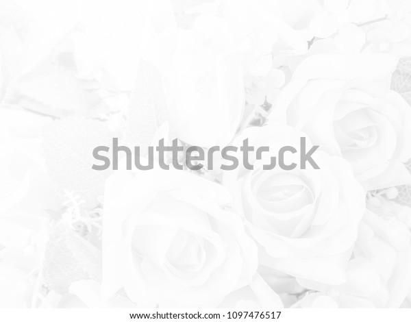 Abstract Rose Plastic Black White Wedding Stock Photo Edit