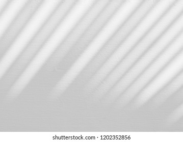 abstract shadow of palm leaves on white concrete wall
