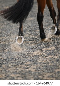 An abstract shot of a horse trotting showing its shoe.