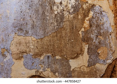 Abstract A simple gray concrete wall background. Abstract cement stains on the wall as a background for creative design