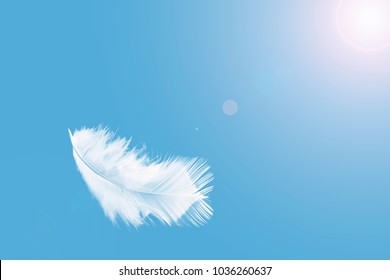 Abstract single white feather floating in the sky.