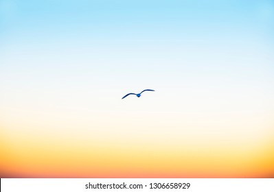 abstract of a sky at sunset