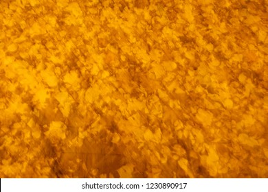 abstract soft blur background from autumn leaves