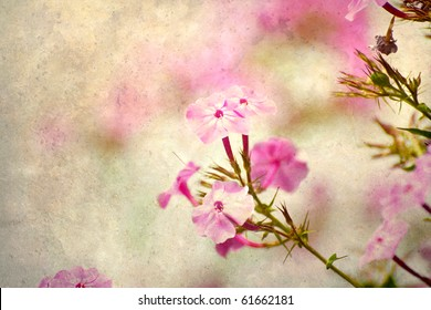 Abstract soft floral summer nature background on antique texture with copy space.