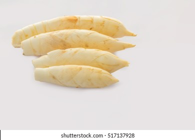 Abstract soft focus of the West Indian Arrow-Root,Maranta arundinacea,Canna indica,Australian arrowroot,Myrantacae,with the white copy space background.The local,herb, vegetable and Thailand food.
